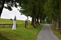 Cesta povede mimo jiné i přes bystřickou pohádkovou alej a kolem dětských hřišť.
