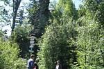 Do pětatřiceti metrů výšky nad okolní terén dosahuje nejvyšší z vrcholů Drátenické skály, která se nachází poblíž Blatin na Novoměstsku.