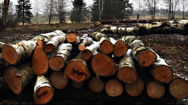 Sdružení Krajina nabízí samovýrobu dřeva.