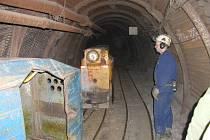 Těžba uranu může pokračovat.