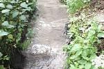 Firma Fritagro Nížkov se podle inspektorů České inspekce životního prostředí provinila tím, že v květnu 2016 znečistila potok čistírenskými kaly. Vodní tok, který je významným krajinným prvkem, tak poškodila.