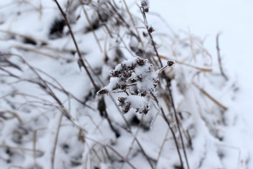 Zima na Vysočině.