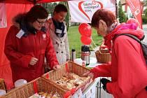 Výtěžek z prodeje sladkého pečiva půjde na podporu Domácí hospicové péče žďárské charity.