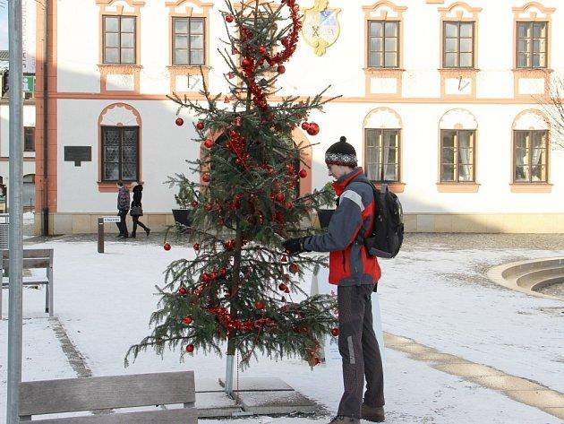 Vánoční přání plní i stromek na žďárském náměstí.