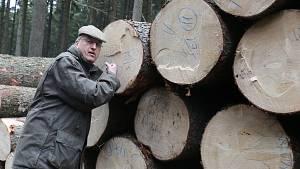 Prastaré smrky z lesů Kinských poslouží k výrobě klavírů a pianin značky Petrof