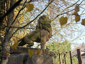 Památník padlých byl postaven v blízkosti lip svobody.