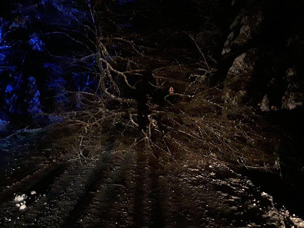 Hasiči na Vysočině likvidovali popadané stromy na komunikacích téměř na třiceti místech.