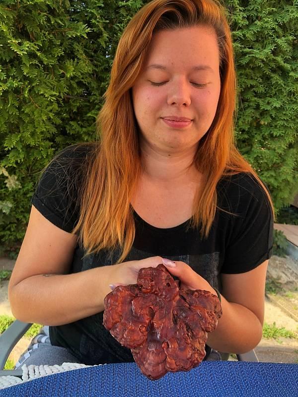 Nela Rundštuková z Rokytna našla houbu nesmrtelnosti.
