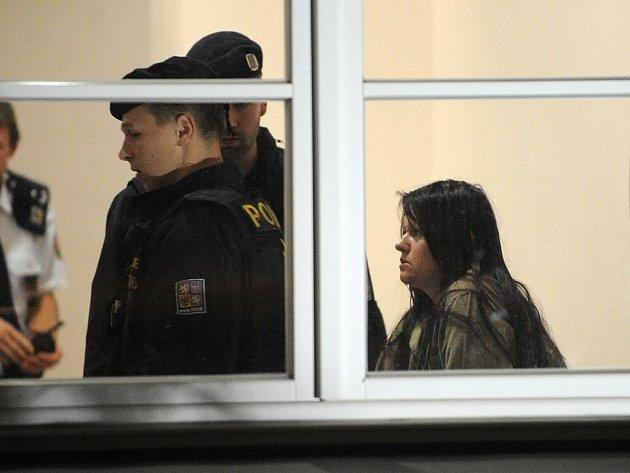 Žena obviněná z loňské vraždy studenta a braní rukojmích ve škole ve Žďáru nad Sázavou nebyla v době spáchání činu příčetná. Vyplývá to ze závěru znaleckých posudků duševního stavu obviněné.