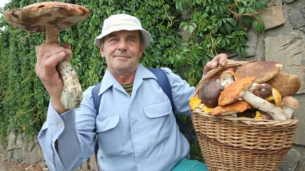 Z lesů Žďárska můžete přinést začátkem listopadu plné tašky hub.