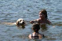 V rybníku Medlov na Novoměstsku se již zhošila kvalita vody.