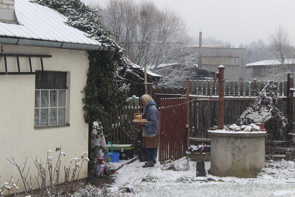Veterináři z Krajské veterinární správy v Jihlavě utratili šest slepic a kohouta také v sousedním chovu Marty Němcové. Ta musel nechat zlikvidovat i vajíčka.