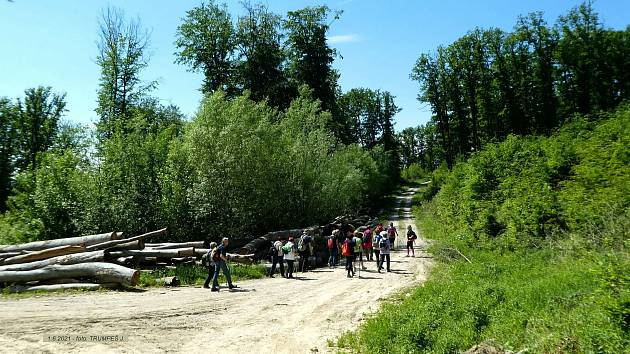 Výlet naučnou stezkou Ždánickým lesem ke kapli Panny Marie v Kučích