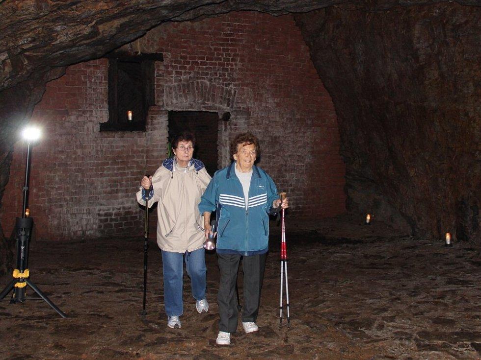 Dům v Brněnské ulici dostal své číslo popisné 249 po zrušeném lihovaru. Pod ním a pod přináležející zahradou se nachází padesát metrů dlouhý klenutý sklep, který končí lednicí vytesanou ve skále k celoročnímu skladování ledu.