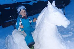 Sněhuláci, ať už v podobě panáků ze tří koulí nebo v jakémkoliv jiném provedení, jsou nyní v Křídlech na Žďársku in. K vidění je i více než zdařilá socha koně.