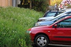 Lidé ve Žďáře si stěžují na neposečenou přerostlou zeleň.