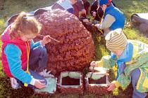Děti se v novoměstské mateřské škole věnují široké škále aktivit a různých naučných programů, které jim mají pomoci s rozvojem jejich vzdělání. Využívají pro ně prostory samotné školky, ale například i přírodní zahradu.