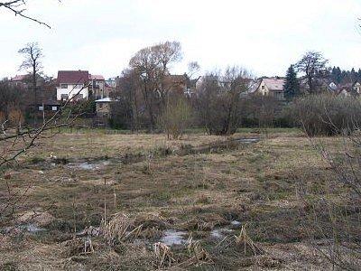 Kazmírovský rybník před odbahněním