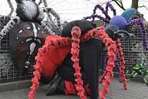 Masopustní průvod letos v Pikárci s největší pravděpodobností ovládnou pavouci. Tak to alespoň naznačuje jejich současný zvýšený výskyt v obci.