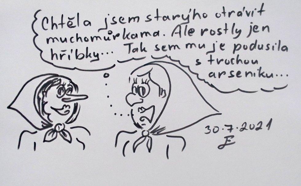 Radek Chodura z Herálce houby nejen sbírá, ale také o nich kreslí vtipy.