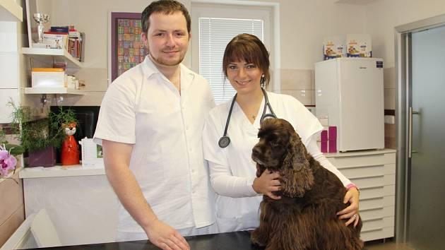 Veterinární kliniku Iggy, která už tři roky úspěšně pracuje ve Žďáře nad Sázavou, vybudovala a provozuje Iva Mašíková. S kolegou Janem Müllerem (oba na snímku) se tam věnuje především péči o malá zvířata.