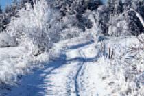 Přírodu na Žďársku sice už pokryl sníh, ale na běžecké lyžování a hlavně na strojovou úpravu tratí je ho stále ještě příliš málo.