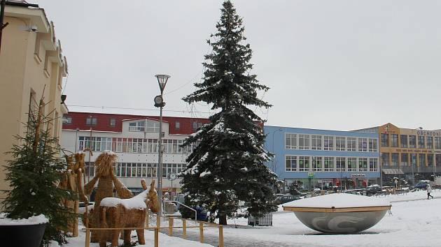 Vánoční strom na náměstí Republiky ve Žďáře nad Sázavou - rostlý stříbrný smrk. Vysoký je zhruba čtrnáct metrů.
