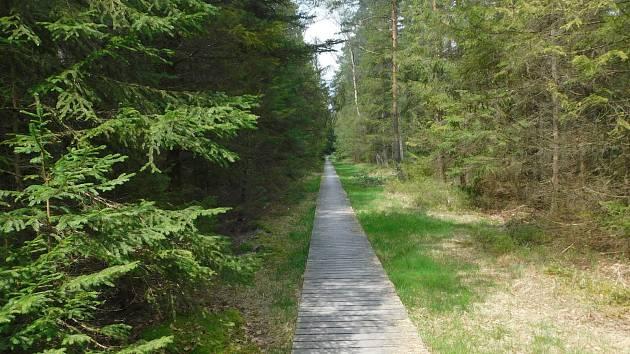 Zrušenou naučnou stezku kolem Velkého Dářka v roce 2013 nahradila kratší s názvem Dářská rašeliniště.