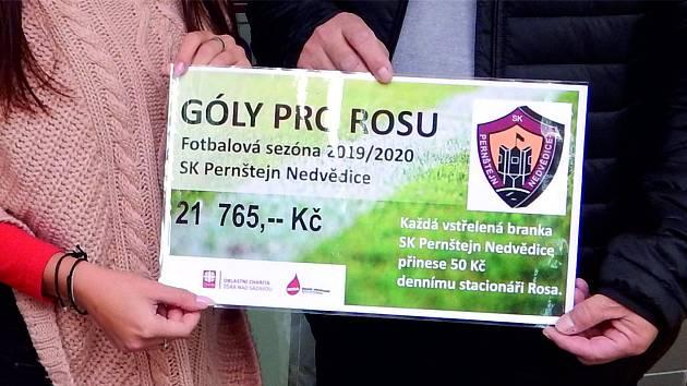 Gól pro charitu: Fotbalisté obdarovali bystřický denní stacionář Rosa