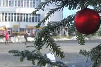 Strom splněných přání letos stojí také ve Žďáře nad Sázavou na náměstí Republiky. Většina lístků už z větví zmizela.