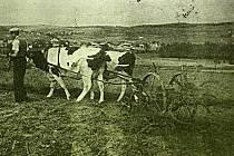 Jak se žilo v Moravské Svratce. Fotografie byly pořízeny ve 40. a 50. letech minulého století.