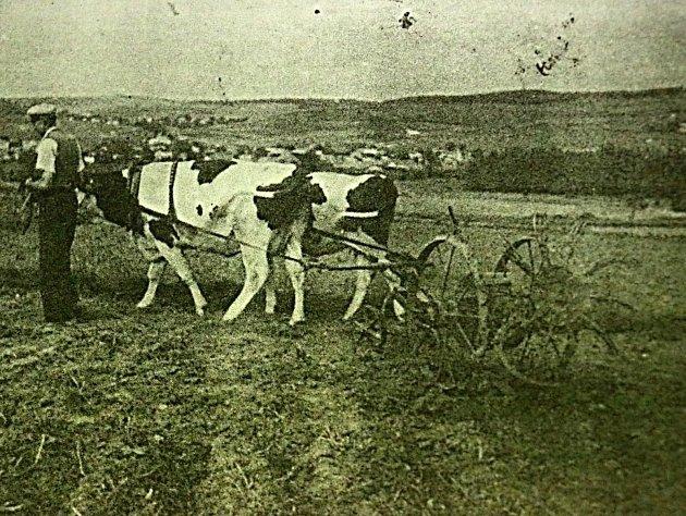 Jak jsme žili v Československu - Moravská Svratka