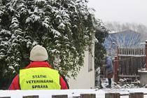 Drůbež v chovech ve Štěpánově nad Svratkou a v tříkilometrovém ochranném pásmu bude podrobena kontrolnímu vyšetření.