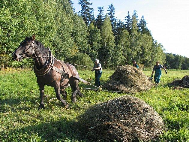 Sdružení Krajina se zabývá kosením podmáčených luk, výsadbami alejí, budováním tůní a dalšími revitalizačními projekty.