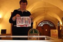 Eva Chmelařová instaluje výstavu svých propisek v novoměstském muzeu. Vernisáž se uskuteční dnes v 16 hodin.