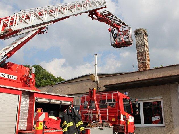 Při akci asistují hasiči.