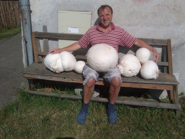 """Pavel Rosecký z Velké Losenice pýchavky sbírá běžně, ty poslední jsou ale jeho rekordním nálezem. """"Ano, jsou zatím největší, jaké jsem kdy našel,"""" říká houbař."""
