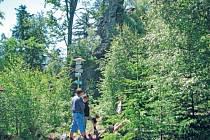 Jednou ze skal Žďárských vrchů, která se ztrácí mezi bujnou vegetací, je i Malinská skála poblíž Blatin na Novoměstsku. Její okolí by mohlo být citlivě odlesněno.