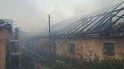 Požár zapříčinila nedbalost při pálení.