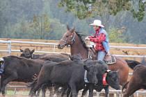 Práce s dobytkem byla ústředním tématem série westernových závodů, které se po celé léto odehrávaly v areálu Mitrovského dvora.