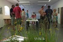 Až do konce letošního srpna je zájemcům k dispozici nová výstava Lidé pro přírodu. Návštěvníky čeká v inventoriu žďárského zámeckého Muzea nové generace interaktivní expozice, která ukazuje, jak důležité je sečení podmáčených luk a jak pestrá je fauna i f