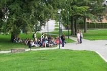 V parku ve Strojírenské ulici ve Žďáře nad Sázavou se mohou lidé projít mezi zelení, sednout si na lavičku či třeba pod strom.