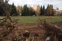 Součástí terénních prací, které předcházejí rekonstrukci hřiště, bylo i vykácení některých dřevin.