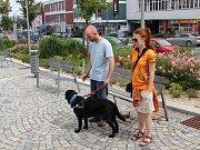 Pod dohledem instruktorek se zdokonalují jak nevidomí, tak i slepečtí psi.