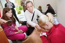 Již poosmnácté se utkali školáci z celého okresu v soutěži Mladý zdravotník.