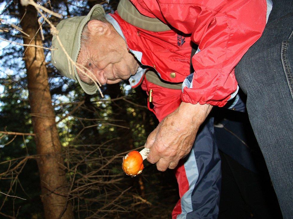 Oldřich Pojezný (na fotografii) sbírá houby nejen pro vlastní spotřebu, ale také na nejrůznější výstavy. To pak naplní košík i houbami nejedlými a jedovatými.