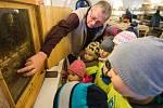 Výstava novoměstských včelařů Vůně medu v Horáckém muzeu.