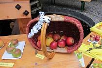 Sládě, Stýmka, Moravská jadernička, Panenské, Rubín, ale také Gráfštýnské, Grahamovo jubilejní nebo Arcikníže Ferdinand - to je několik jmen jablek které se objeví na výstavě v novoměstském muzeu o tomto víkendu 7. a 8. října 2017.
