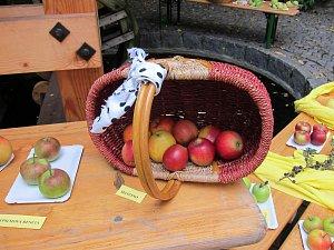 Které jablíčko bude nejkrásnější?
