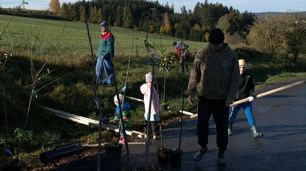 FOTO: Mlynářskou stezku lemuje nové stromořadí. Výsadby se ujali dobrovolníci